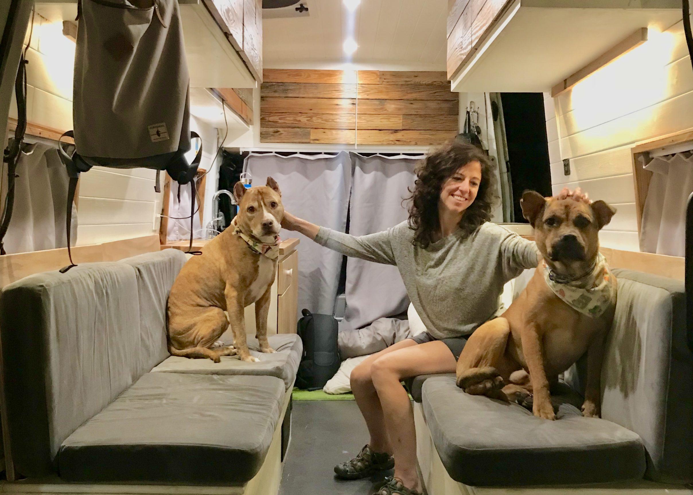 vanlife dogs cargo camper van